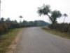 panarroad
