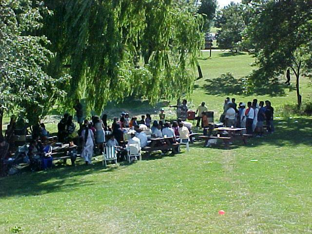 t03_picnic-site